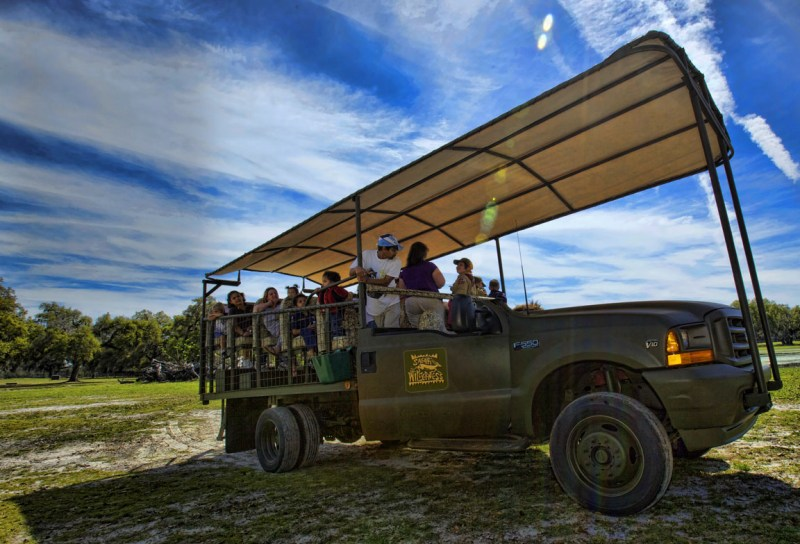 safari em central florida caminhão