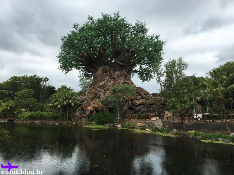 orlando animal kingdom walt disney world tree of life