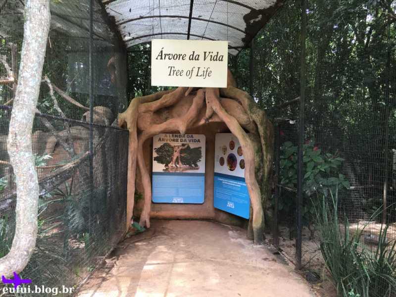 Arvore da Vida no Parque das Aves em Foz do Iguaçu