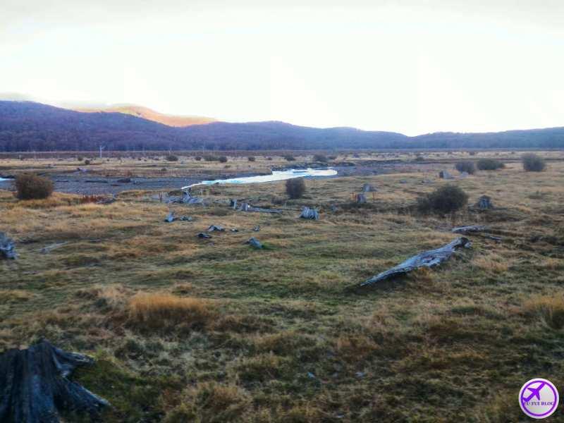 Trem do Fim do Mundo em Ushuaia - Cemitério de Arvores