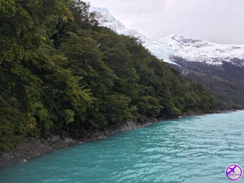 Vegetação Lago Argentino - Rios de Hielo em El Calafate - Argentina