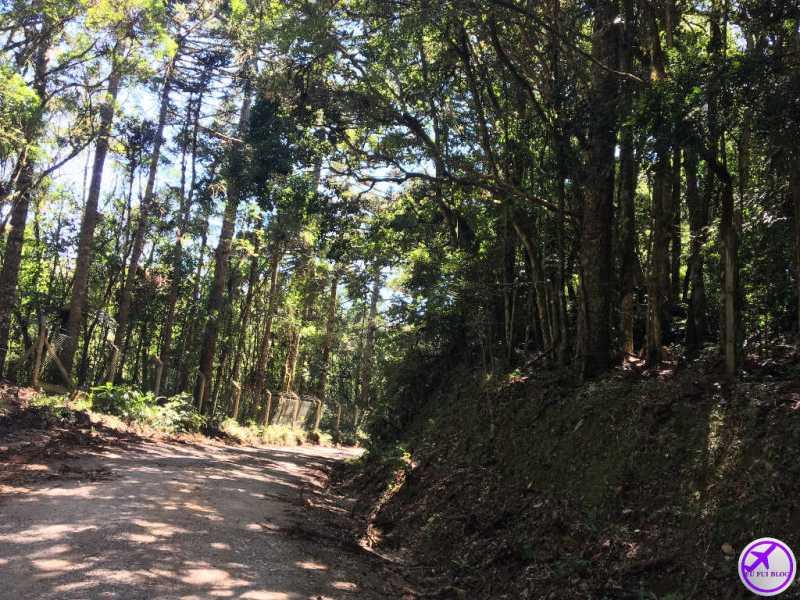 Estrada para a Cave Colinas de Pedra - Piraquara - Grande Curitiba - Paraná