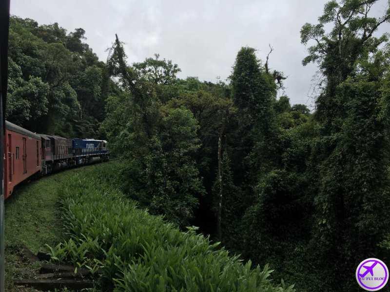 Trem para Morretes e Antonina em Curitiba - Paraná