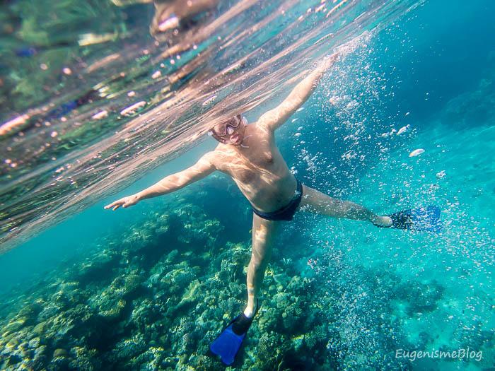 PC290350 - Snorkeling şi scubadiving în Egipt, de Revelion