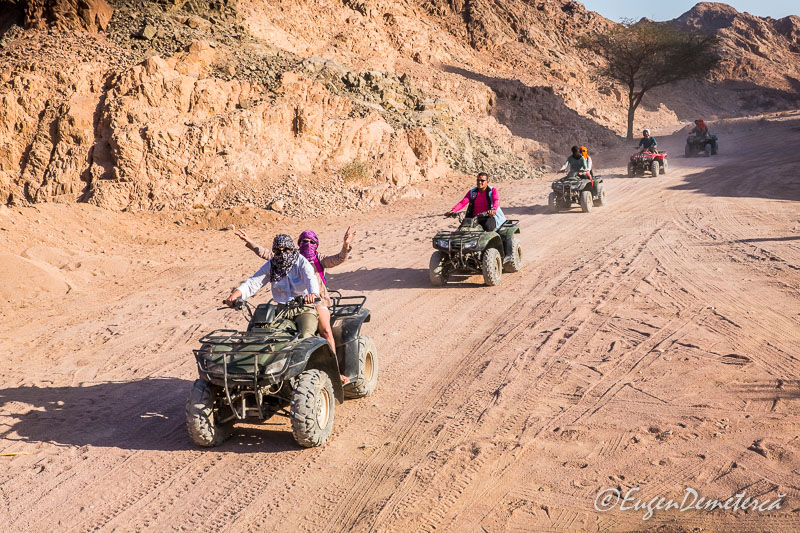 ATV uri - Egipt, destinaţia pentru vacanţe exotice la super-preţuri!