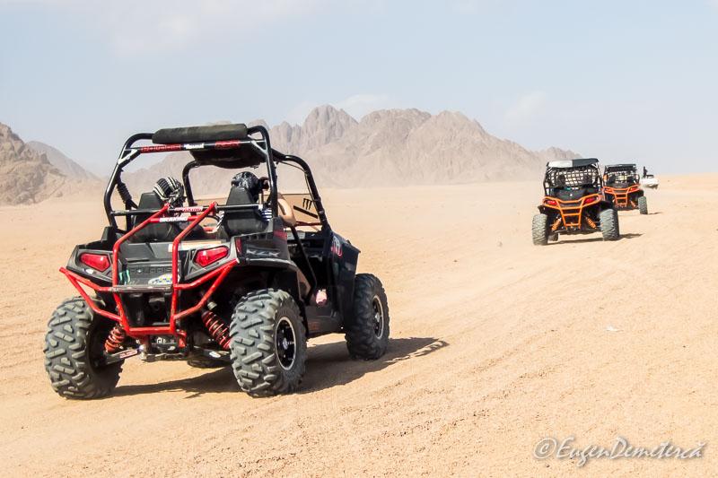 Buggy safari - Egipt, destinaţia pentru vacanţe exotice la super-preţuri!