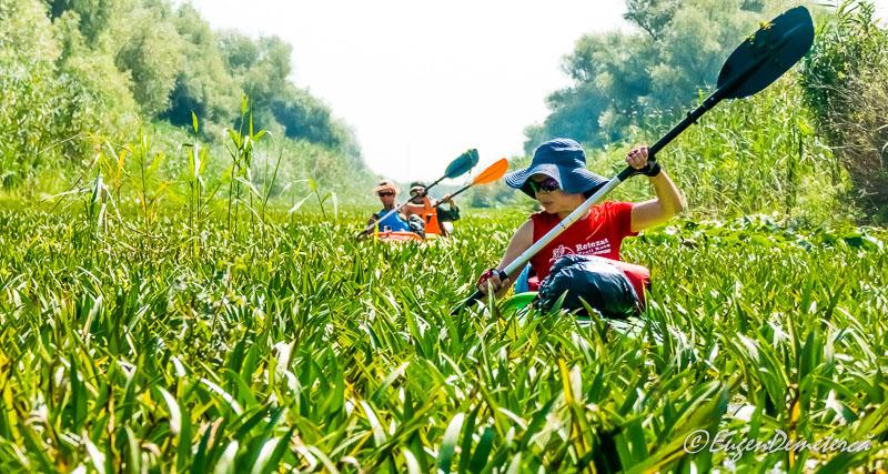 Cu vasle prin Dunarea verde - Călătoria, cea mai bună alegere pentru dezvoltare personală