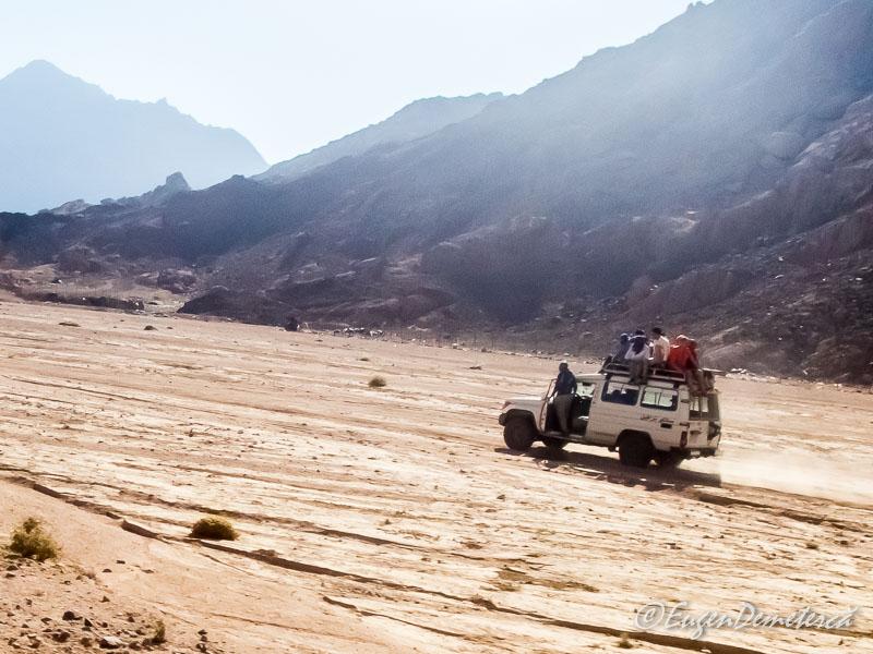 Sofer egiptean nebun - Egipt, destinaţia pentru vacanţe exotice la super-preţuri!