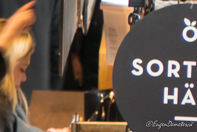 SonyA6500 1 10s at 105 mm detail - Sony A6500, cea mai bună cameră foto mirrorless?