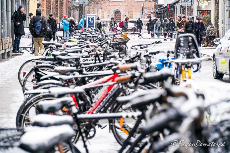 DSC9869 - Copenhaga, printre nămeți primăvărateci