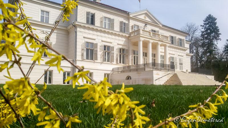 Palatul de la Savarsin cu flori galbene - Paştele Regal la Săvârşin