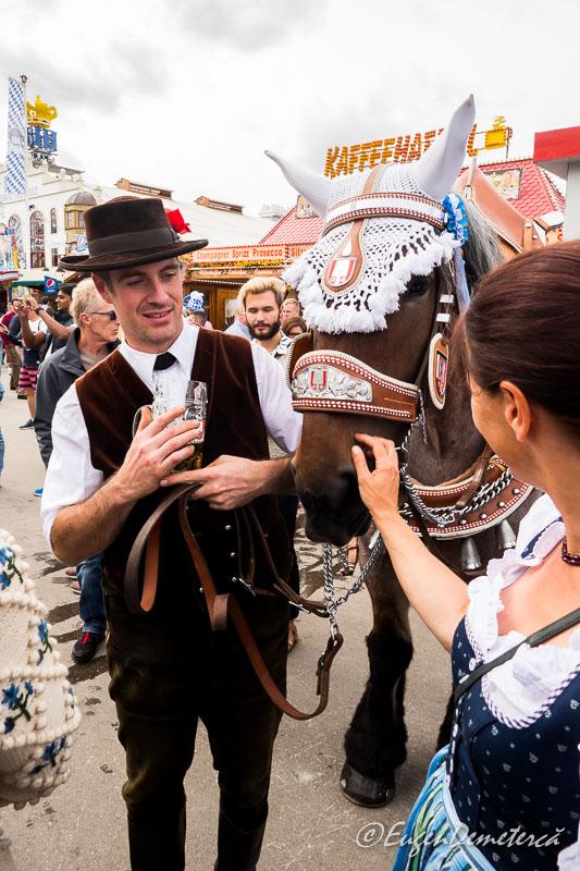 1170599 - Dezmățul de Oktoberfest