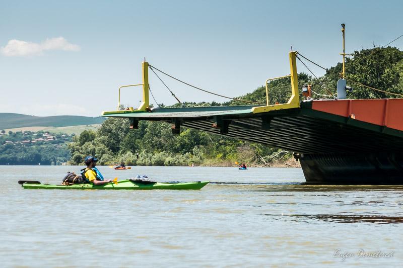 1260852 - Cu caiacul, de la Olt la Dunăre