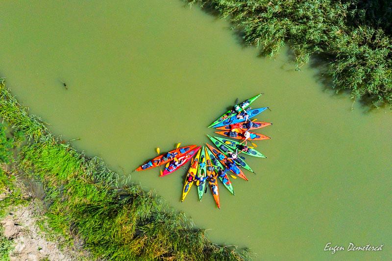 Floare de caiace pe Dunare