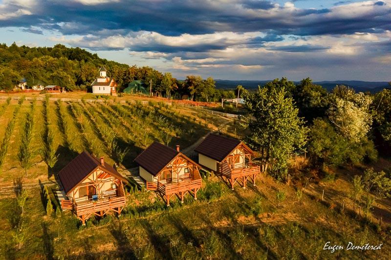IMG 20190920 183002 0564 - Adrenalină UTV în Munții Ciucaș