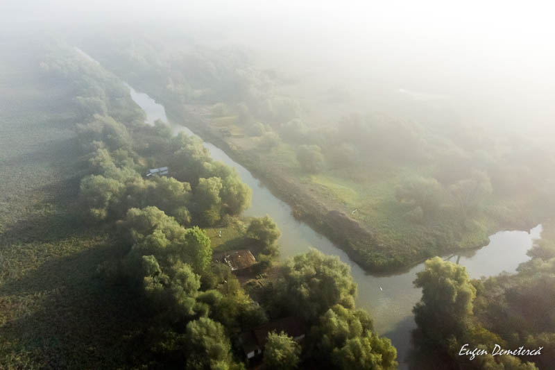 IMG 20190928 085831 0007 - Caiaceală în Delta tomnatică