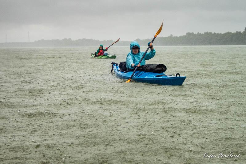 P9275297 - Caiaceală în Delta tomnatică