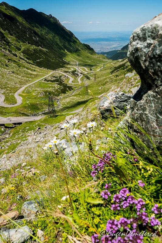 1040312 - Transfăgărăşan, cel mai frumos drum din lume!