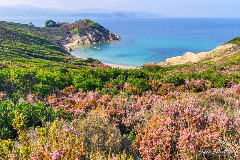 Plaja Krifi Amos - Skiathos