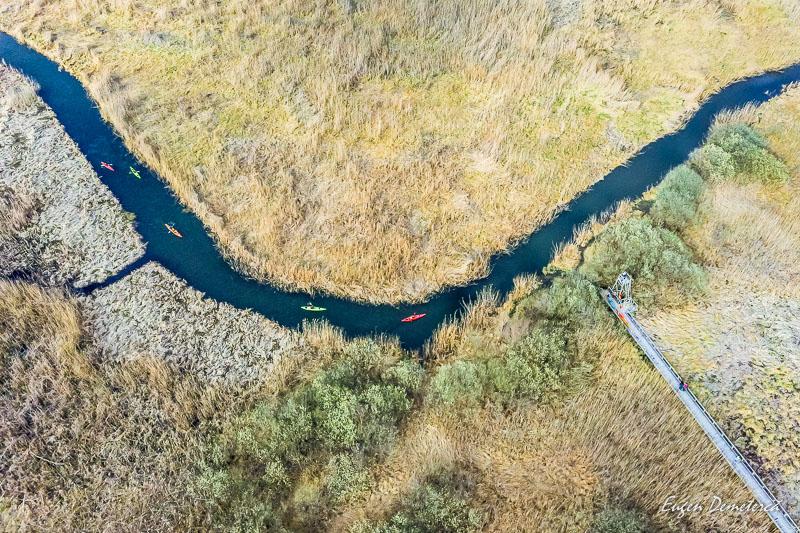 IMG 20200307 153148 0616 - Caiacul cu primăvară în Delta Neajlovului