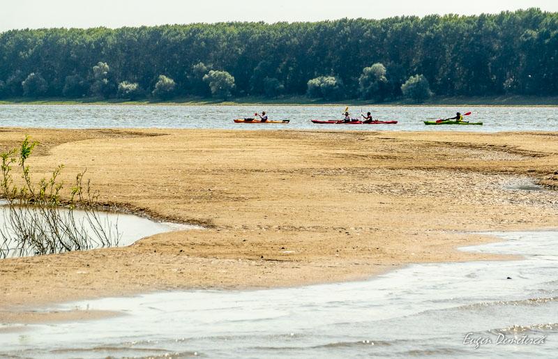 """1034695 - Explorare """"wild"""" în Delta Mică"""