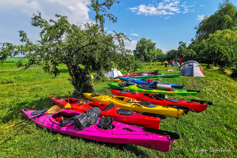 IMG 20210620 160441 - Ciclonizare în Delta Dunării