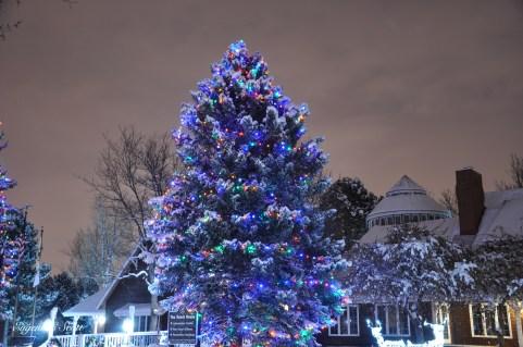 Ken-Caryl Ranch house lights