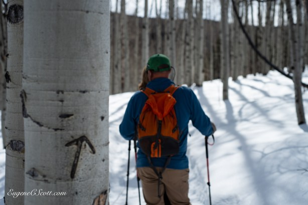 Snow shoeing in the Rockies