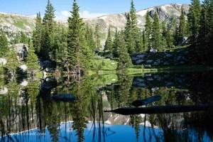 Porcupine lakes