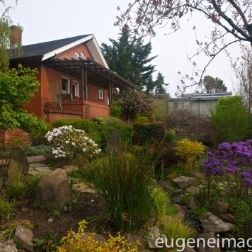 Real Estate Photography - Garden