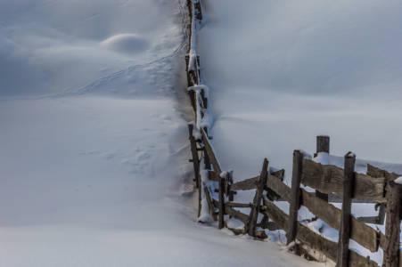 White Snow with Fence (Gârda de Sus, Apuseni, Romania, January 2017)