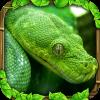 snake-simulator.png