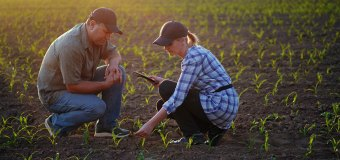 Research Headlines – Helping small farmers to meet growing food needs