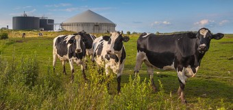 Research Headlines – Smarter farming to cut pollution and improve efficiency