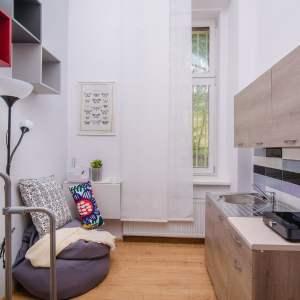 104 Living room of cozy loft apartment (EULIVIA Apartments)