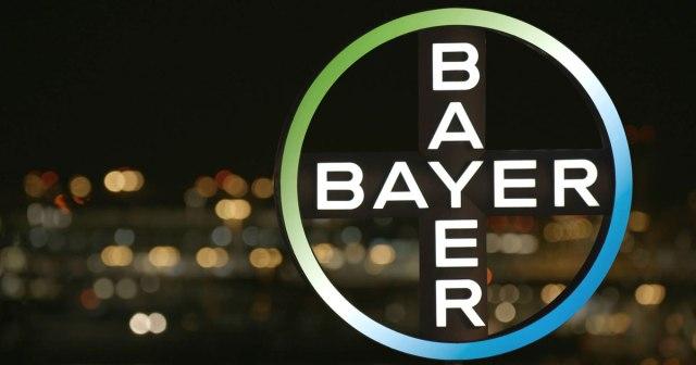 bayer-kreuz