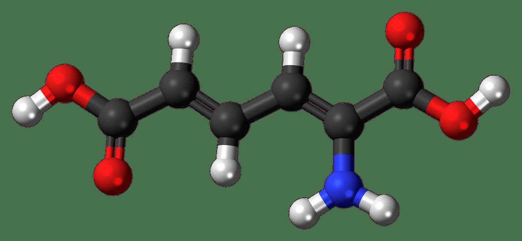 aminomuconic, acid, metabolism