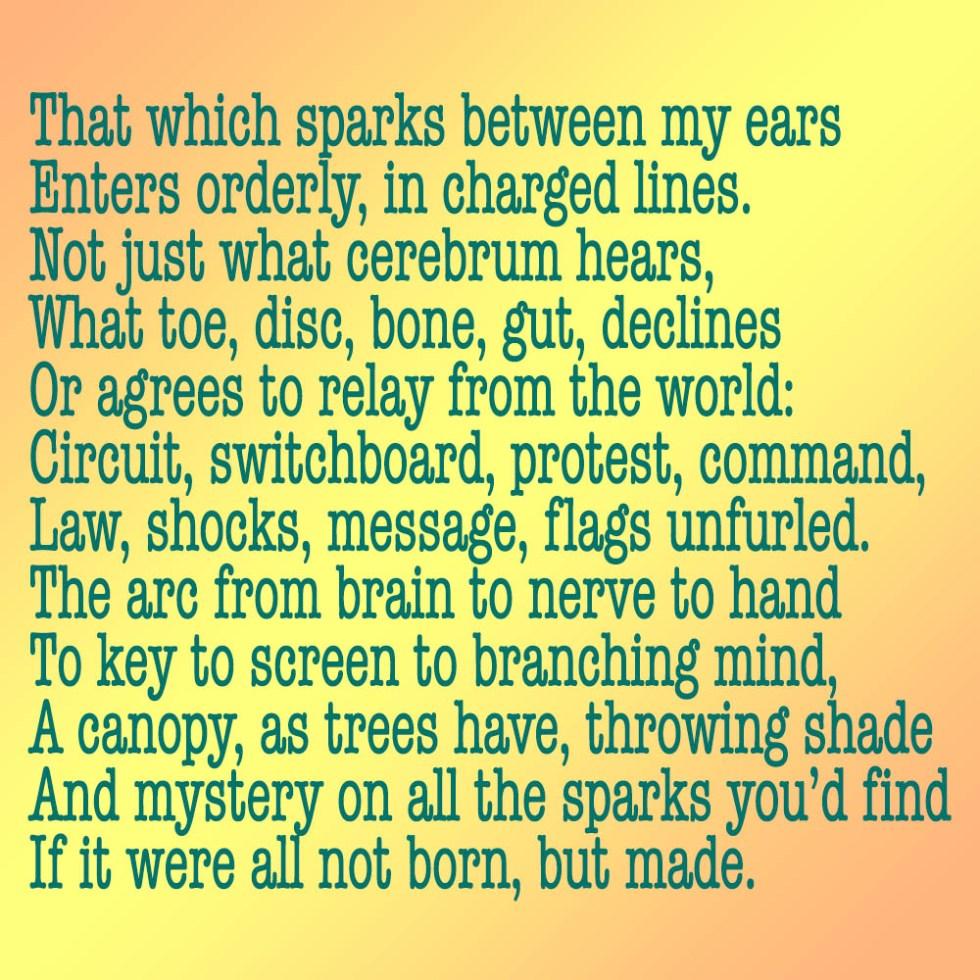 Plexus, a poem regarding cognition and embodiment