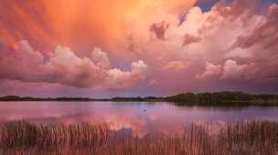 como pintar paisagem