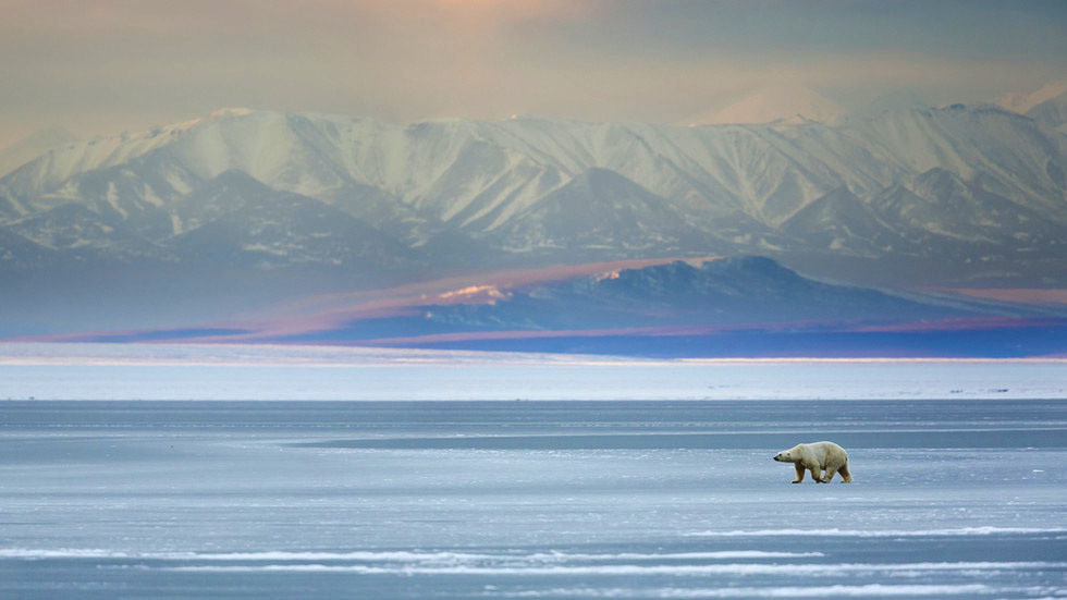 India will help Russia turn Arctic into global trade route