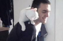 飼い主さんにメロメロな猫