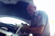 子猫を救出する消防士さん