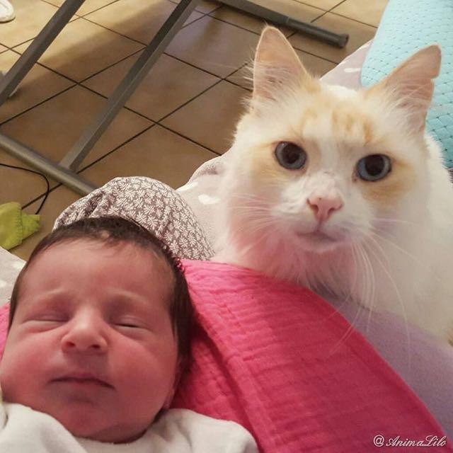 赤ちゃんといっしょにハイポーズ