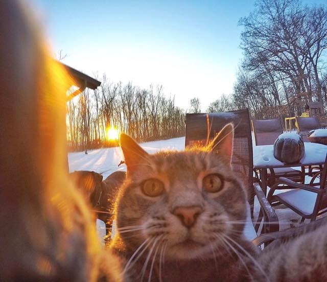 夕焼けの中での自撮り写真