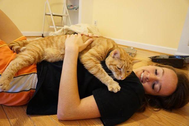 抱き合う猫と女性