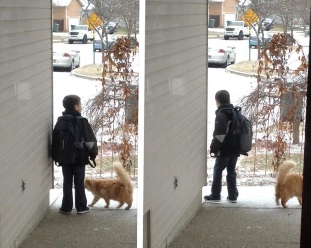 冬の日もバスを待つ猫と少年