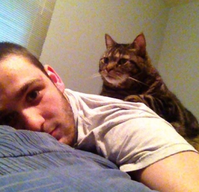 男性の背中に鎮座する老猫