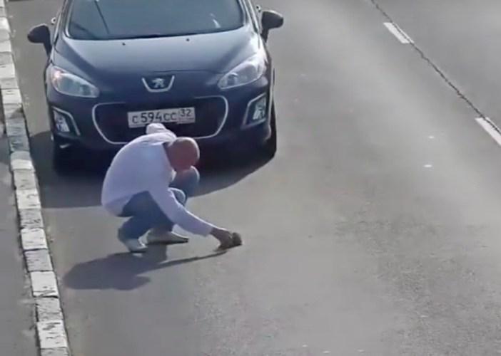子猫を助ける男性