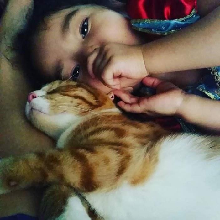 子供と幸せそうな猫