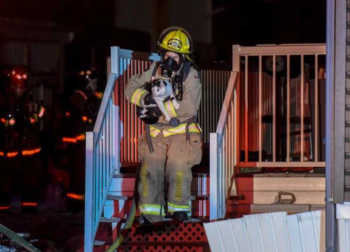 火事から猫を救出する消防士